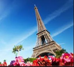 photo of Eiffel Tower and flowers in front