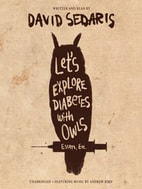 book cover of Let's Explore Diabetes with Owls