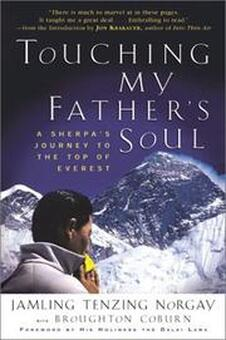 book cover of Touching My Father's Soul